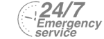 24/7 Emergency Service Pest Control in Southgate, N14. Call Now! 020 8166 9746